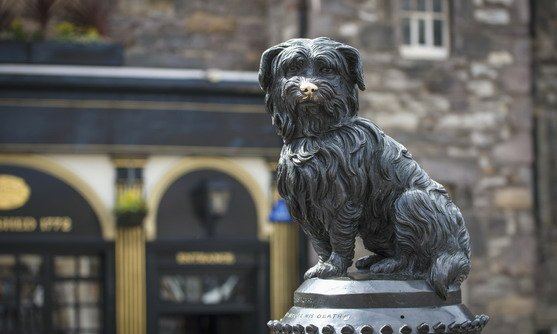 vb34162980_greyfriars bobby, edinburgh_18-08-2019.jpg