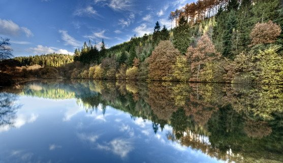ve20282_autumn colour at staintondale lake, dalby forest in the north york moors national park_22-08-2019.jpg