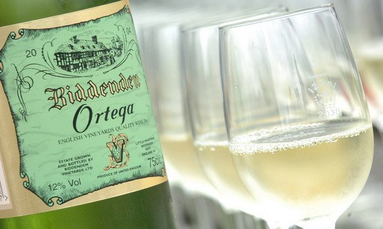 biddenden vineyards ortega & glass.jpg