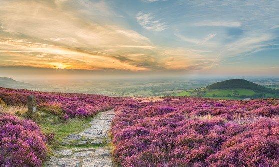 Engeland | Yorkshire | North York Moors