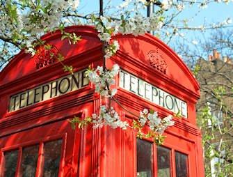 Telefooncel - Londen